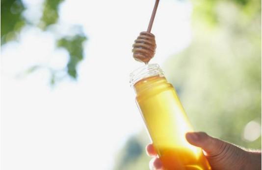 miel-abeille-ruche